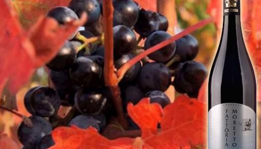 Lambrusco Grasparossa: Red Bubbles from Emilia