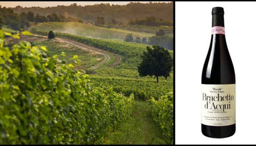 Brachetto d'Acqui: A Sparkling Wine from the Land of Barbera