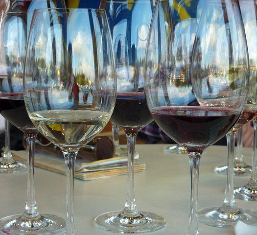 vinoteca wines in the test