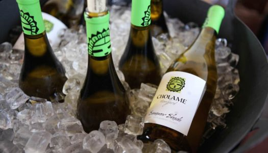 Great Wine Festival 2016: The Best Bites and Sips