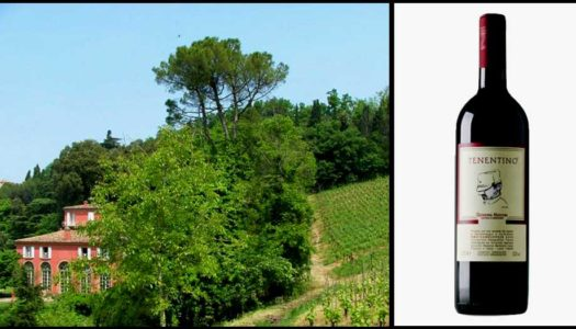 Sangiovese Tenentino: From Romagna with Love